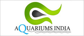Web design for Aquariums Online Store in Howrah, Kolkata